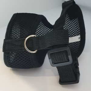 Harness for Cat, small size.